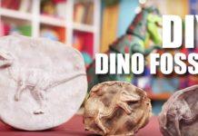 Alçı ile Fosil Nasıl Yapılır? - Hobi Dünyası Okul Öncesi Etkinlikleri - fosil nasıl çizilir fosil nedir okul öncesi oyun hamurundan fosil yapımı yaprak fosili nasıl oluşur yaprak fosili nasıl yapılır