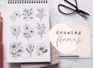 Çiçek Çizimi - Hobi Dünyası - çiçek çizimi gül çizimi kara kalem çiçek çizimi kolay çiçek çizimi papatya çizimi saksıda çiçek çizimi