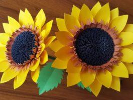 Kağıttan Ayçiçeği Yapımı - Hobi Dünyası Okul Öncesi Etkinlikleri - ayçiçeği yapımı ayçiçeği yapımı okul öncesi kağıttan ayçiçeği kartondan ayçiçeği yapımı