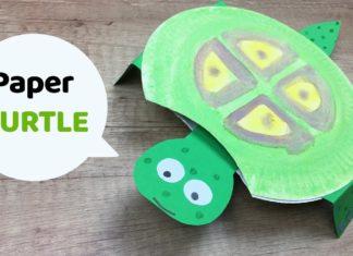Okul Öncesi Kaplumbağa Sanat Etkinliği - Okul Öncesi Etkinlikleri Örgü Modelleri - kaplumbağa yapımı kaplumbağa yapımı okul öncesi okul öncesi etkinlik okul öncesi kaplumbağa sanat etkinlikleri okul öncesi sanat etkinlikleri Preschool Turtle Art Event
