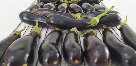 Közlenmiş Patlıcan Konservesi Nasıl Yapılır? - Yemek Tarifleri - közde patlıcan biber konserve közlenmiş patlıcan konserve közlenmiş patlıcan nasıl konserve edilir közlenmiş patlıcan nasıl yapılır